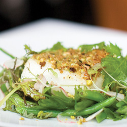Pistachio - Crusted Halibut with Spring Farmers Market Salad
